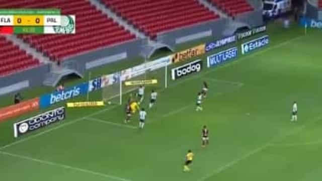 O caricato autogolo que pôs o Palmeiras a perder frente ao Flamengo