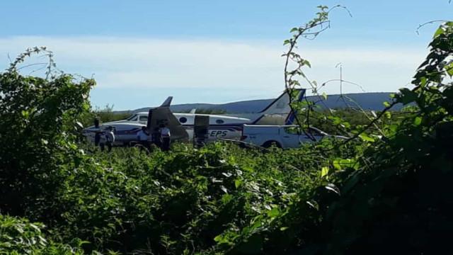 Avião com vacinas contra a Covid-19 despista-se e embate em burro