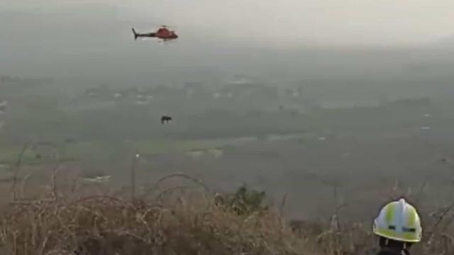 Olivia, a burra que teve de ser resgatada de helicóptero. E há imagens
