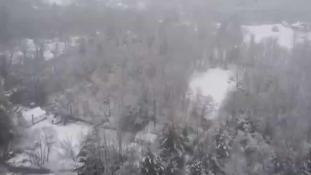 Tempestade de neve primaveril pintou o Massachusetts de branco