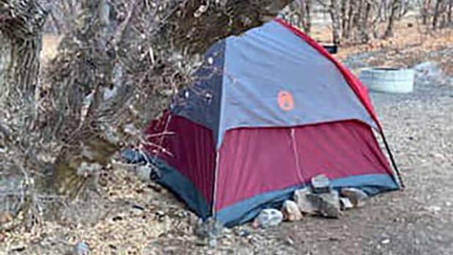 Mulher desaparecida desde 2020 encontrada a viver em tenda na floresta