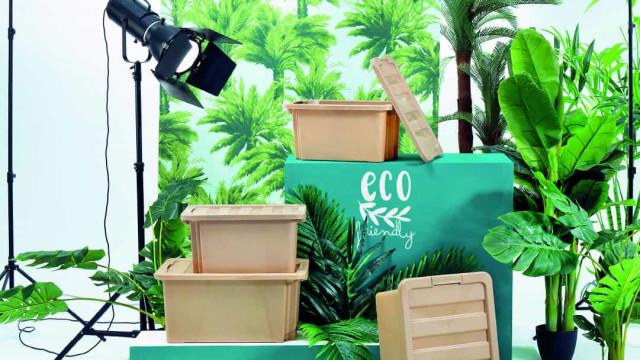 Pense 'verde' e salve o planeta. Ser sustentável nunca foi tão charmoso