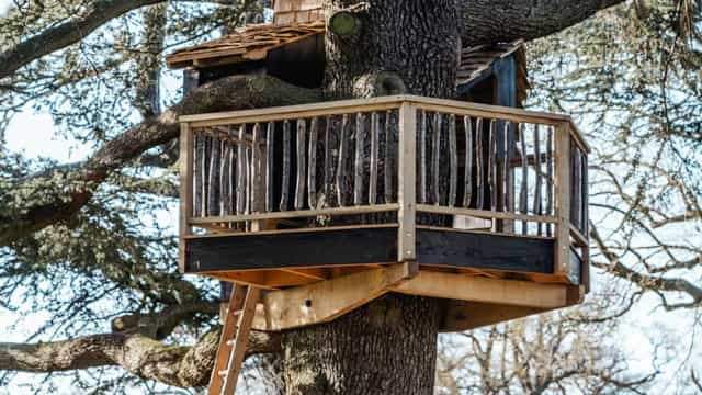 Esta casa na árvore não prejudica o ambiente, mas mistura-se nele