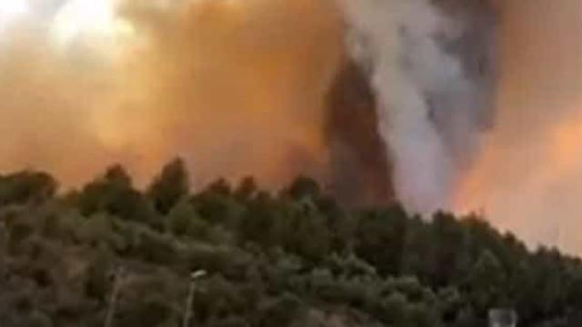 Incêndio ainda por dominar em Barcelona já queimou mais de 200 hectares