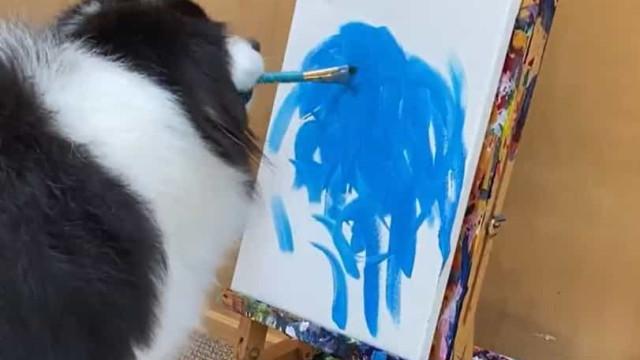 Conheça Secret, a cadela pintora que já conquistou o Instagram