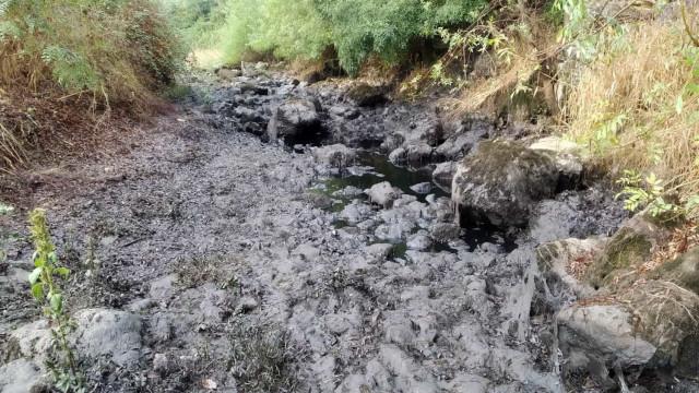 Detetada descarga ilegal de hidrocarbonetos para a água do rio Nabão