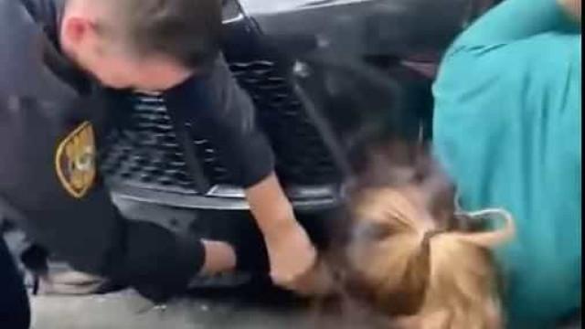 Polícia resgata gatinho preso debaixo de carro em Nova Iorque