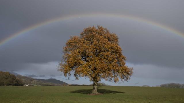 Equinócio de outono ocorre esta noite. Sabe do que se trata?