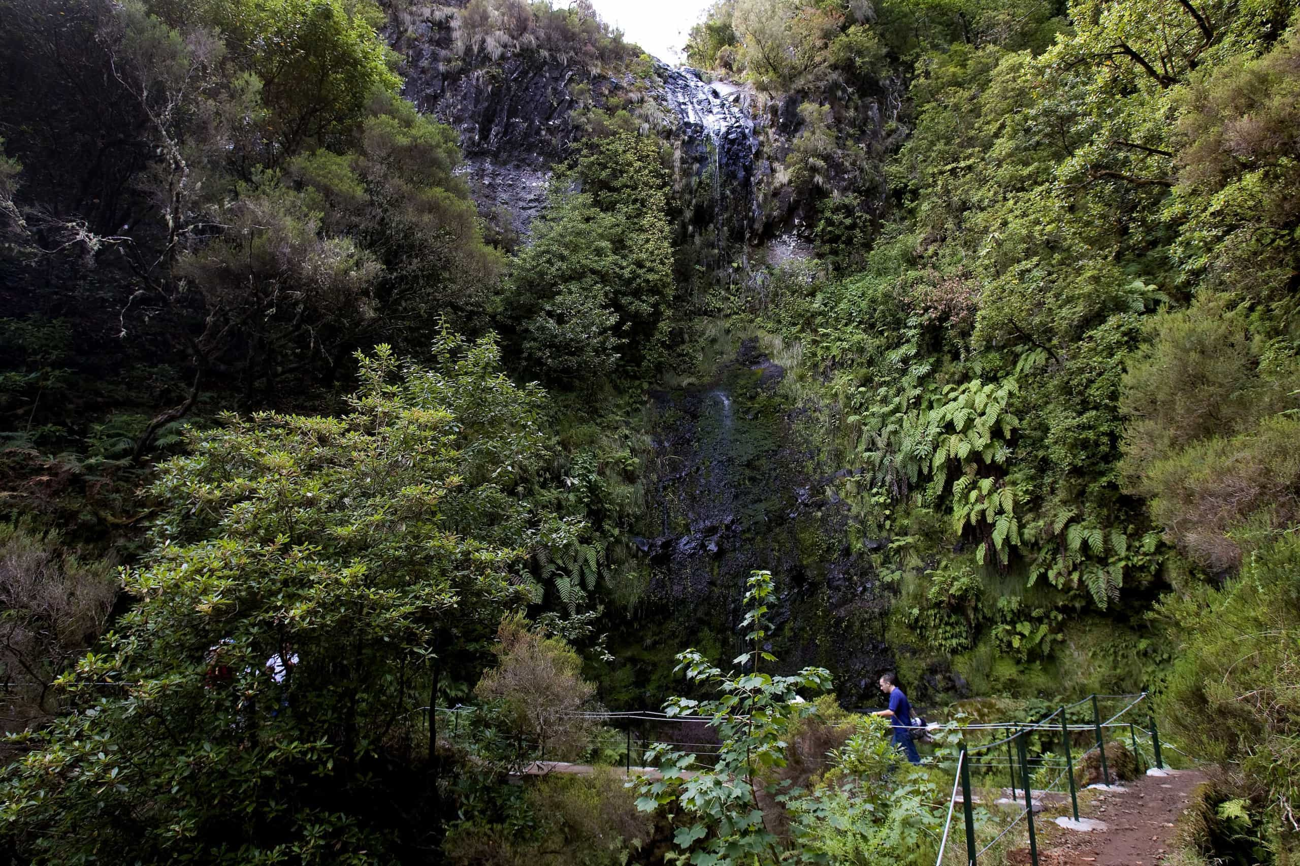 Turistas perdidos na Madeira já foram localizados e estão bem