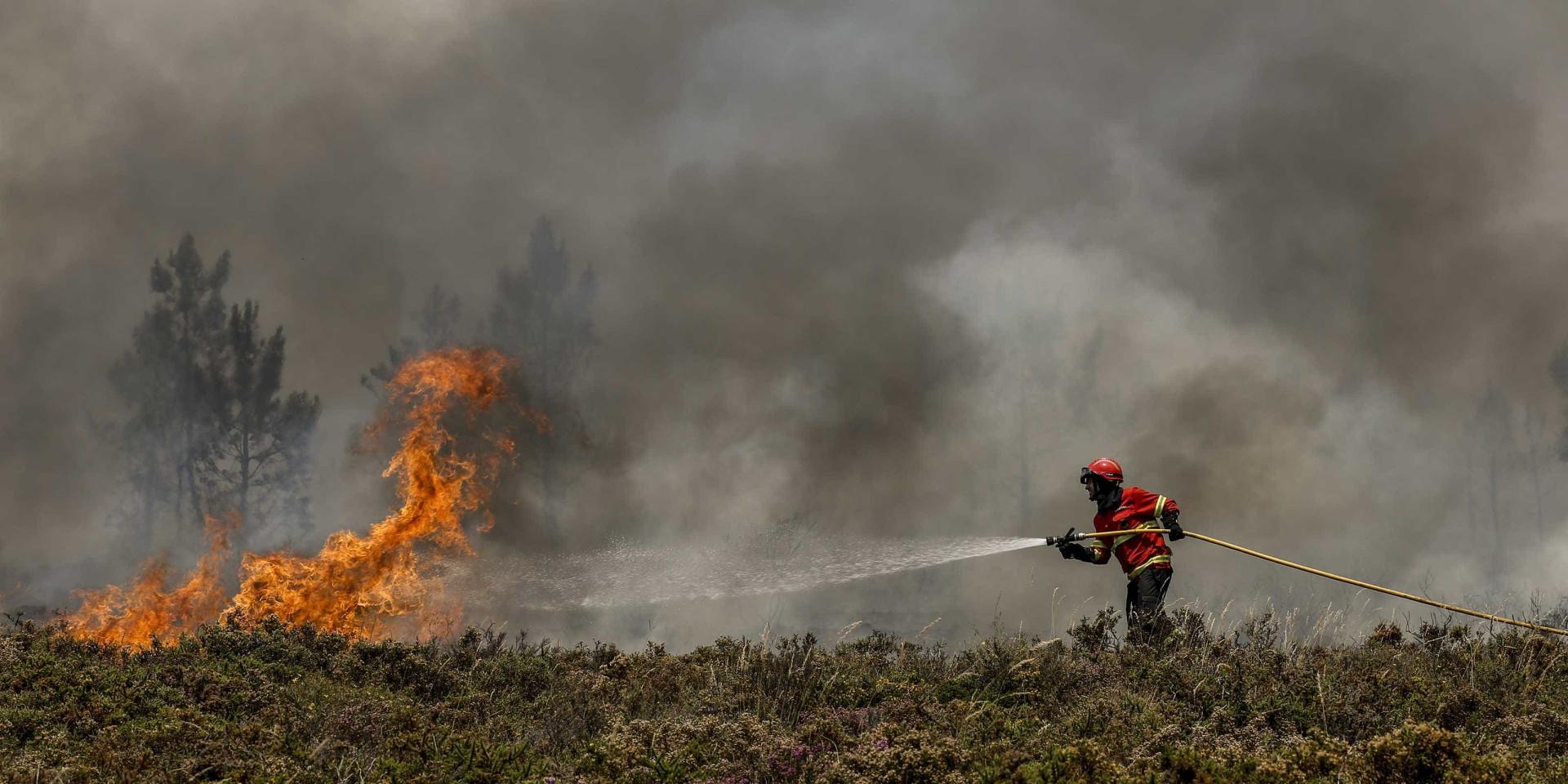 Dois fogos em Pombal mobilizam 350 operacionais e nove meios aéreos