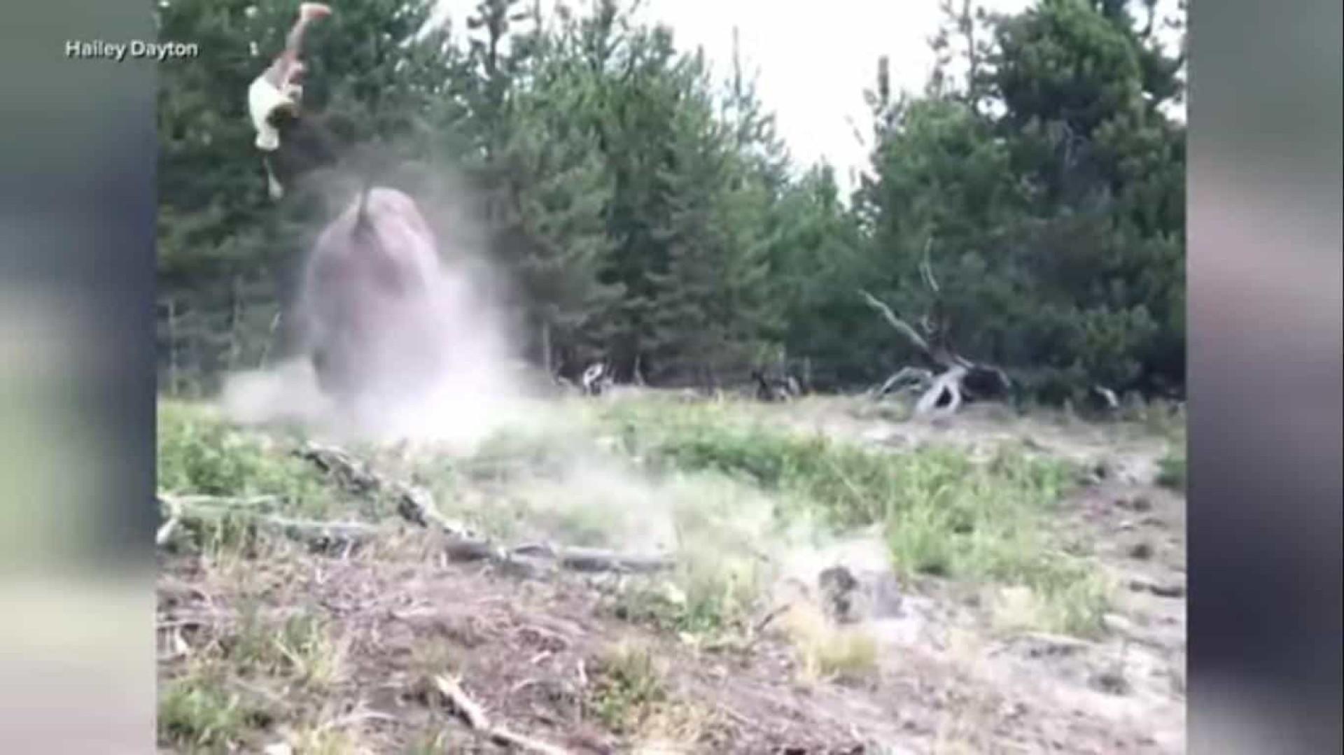 Bisonte atira menina de 9 anos pelo ar. Pais filmados a fugir