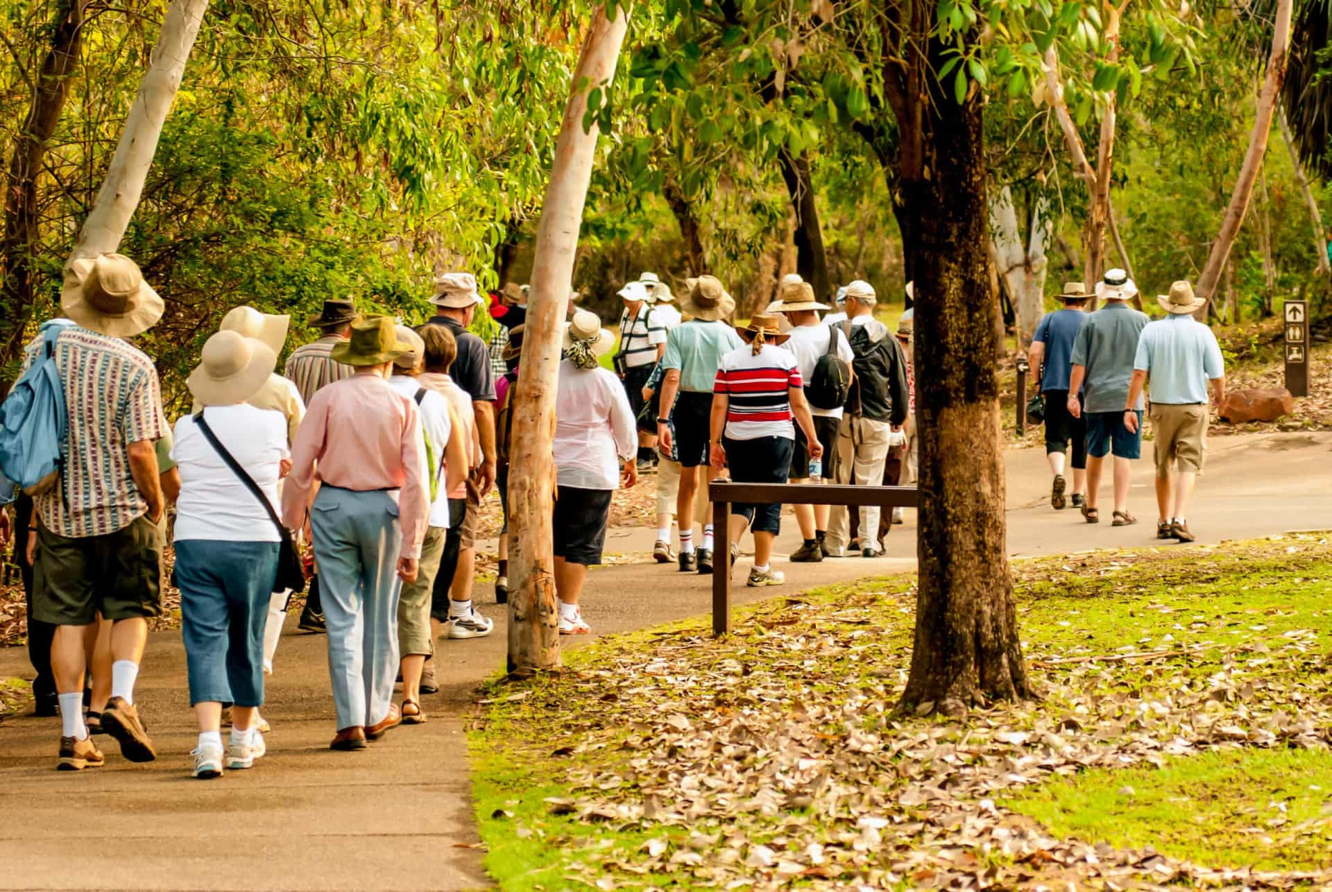 Os benefícios para a saúde da caminhada
