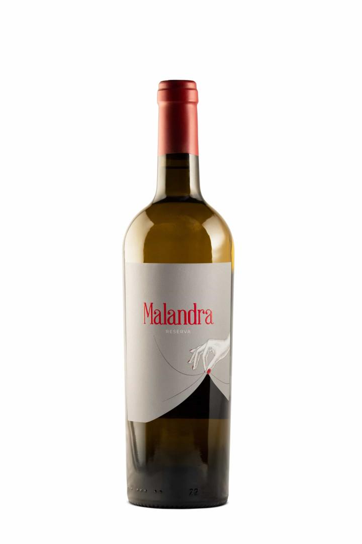 Malandra: Os vinhos branco e tinto criados especialmente para mulheres