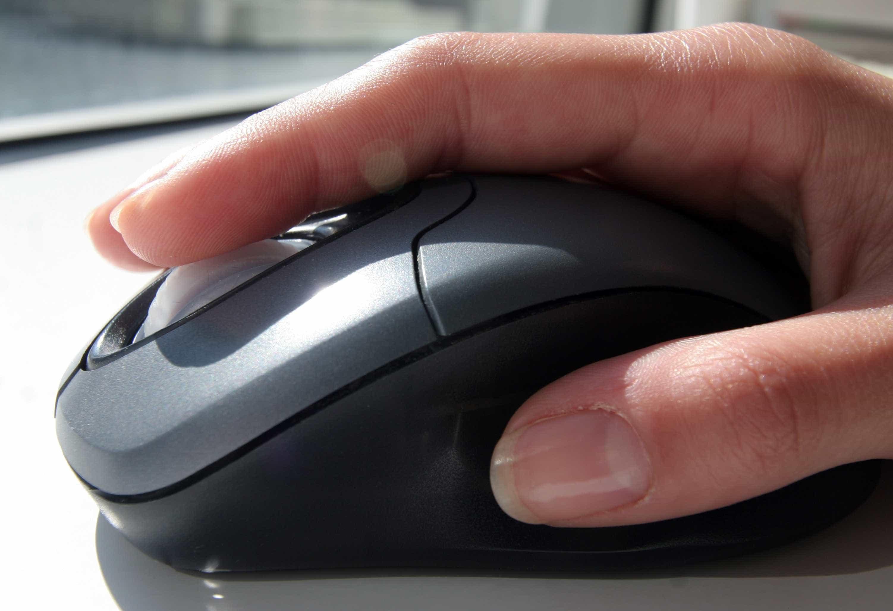 Instituto público abre processo a funcionária por alegados mails racistas