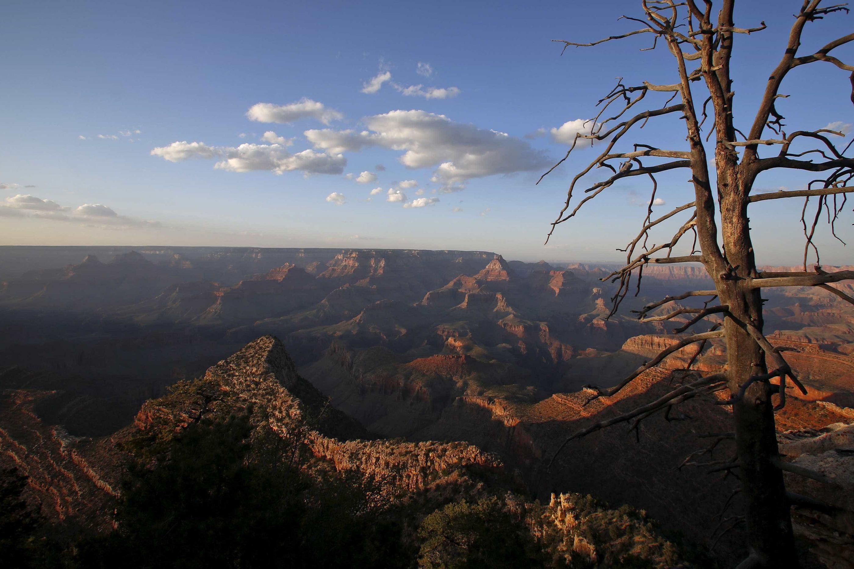 Norte-americano cai no Grand Canyon. É a terceira morte em oito dias