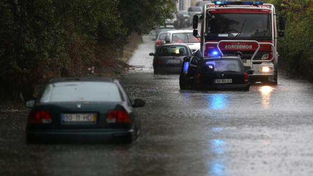 Queda de árvores (e não só). Vento forte provoca estragos em Vila Real