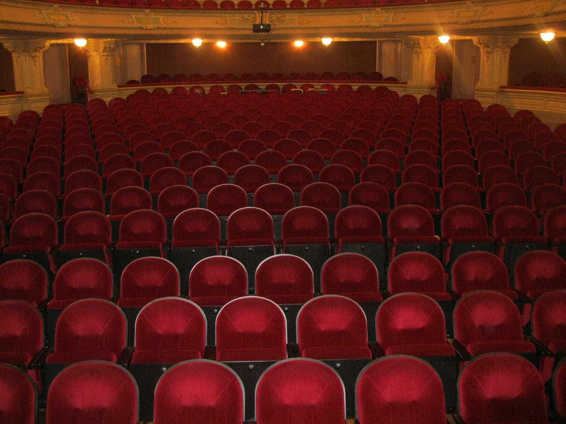 Teatro Estúdio Fontenova estreia 'Auto da Índia'