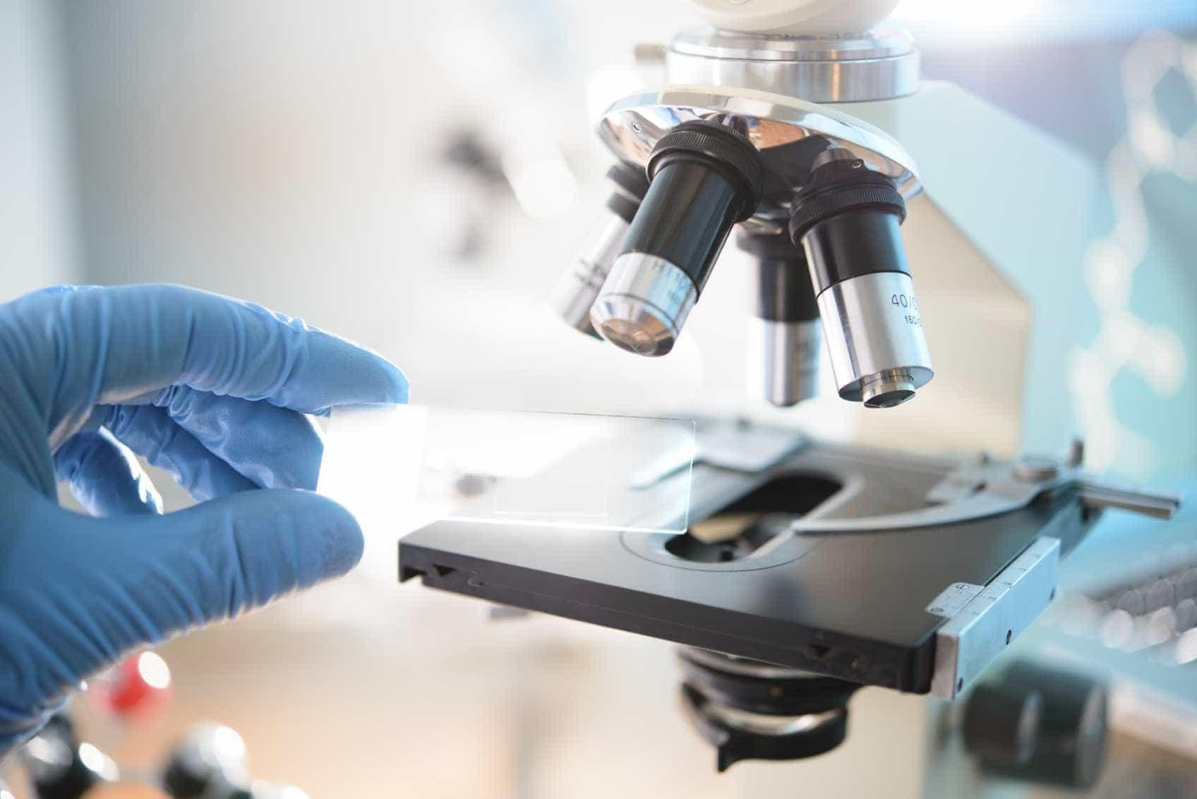 Portugal foi o sexto país da UE a crescer mais em produção científica