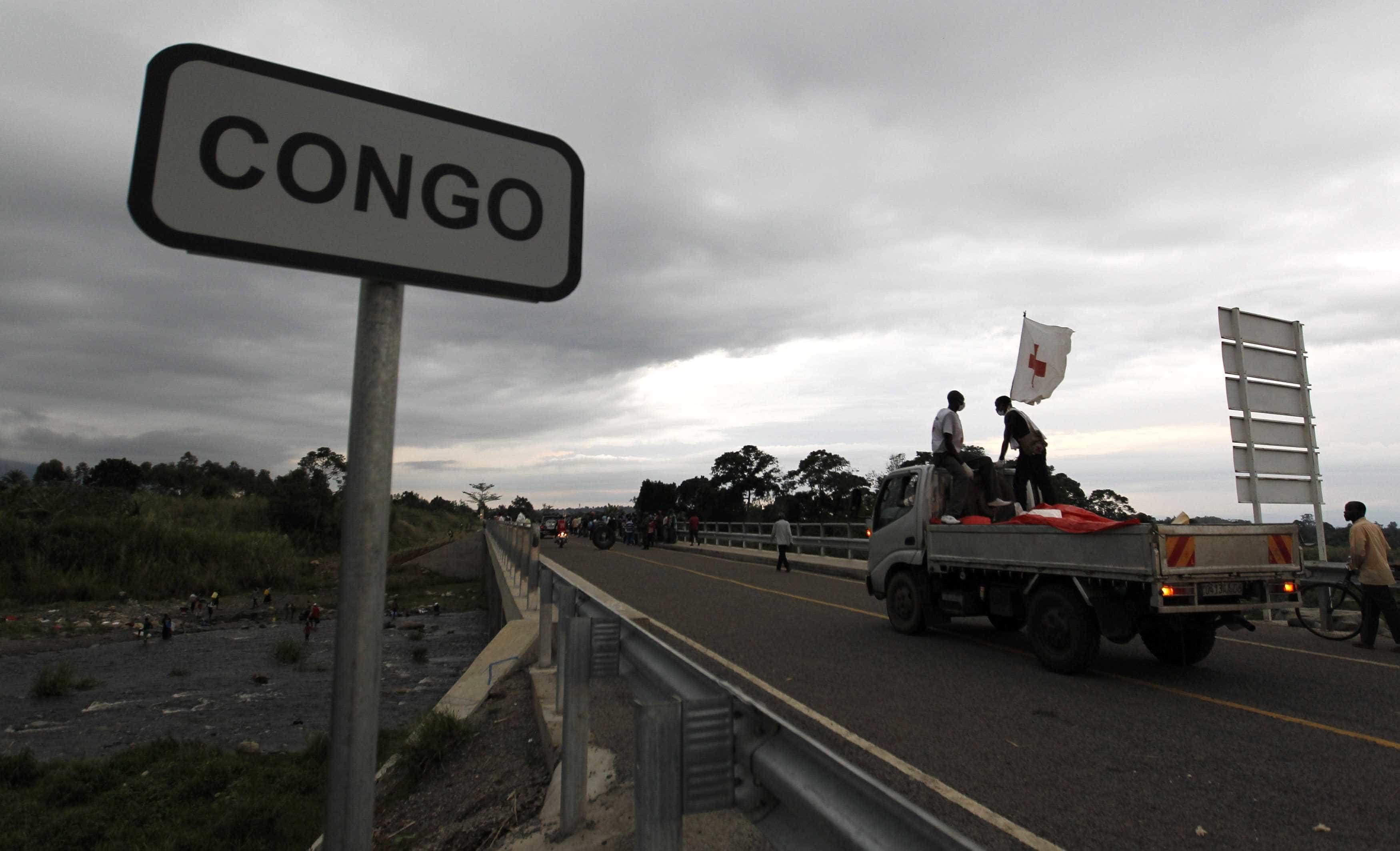 Empresa portuguesa suspeita de comprar madeira ilegal à RDCongo