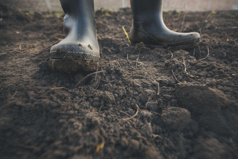 Pedidos de Estatuto da Agricultura Familiar a partir de sexta-feira