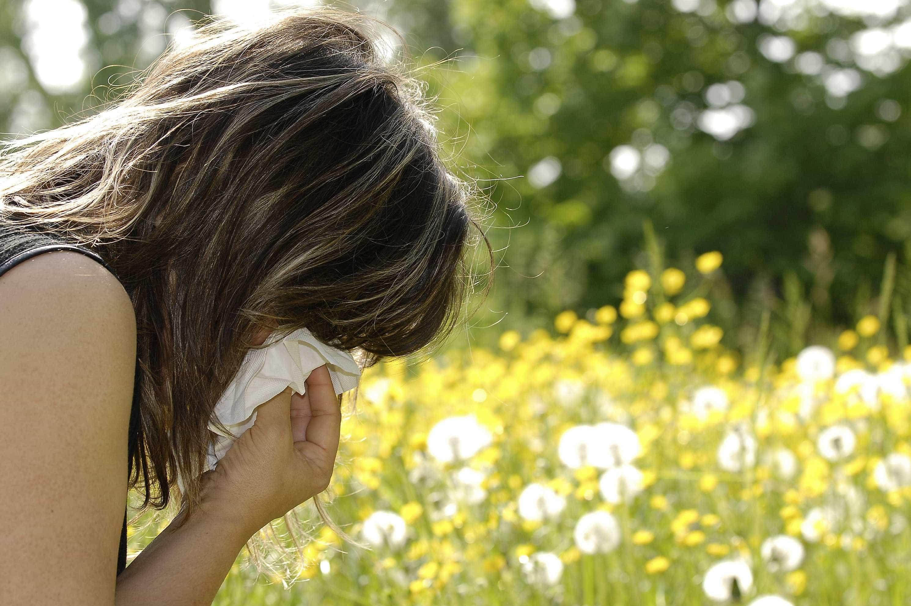 Primavera está a chegar e na bagagem traz estes alergénicos