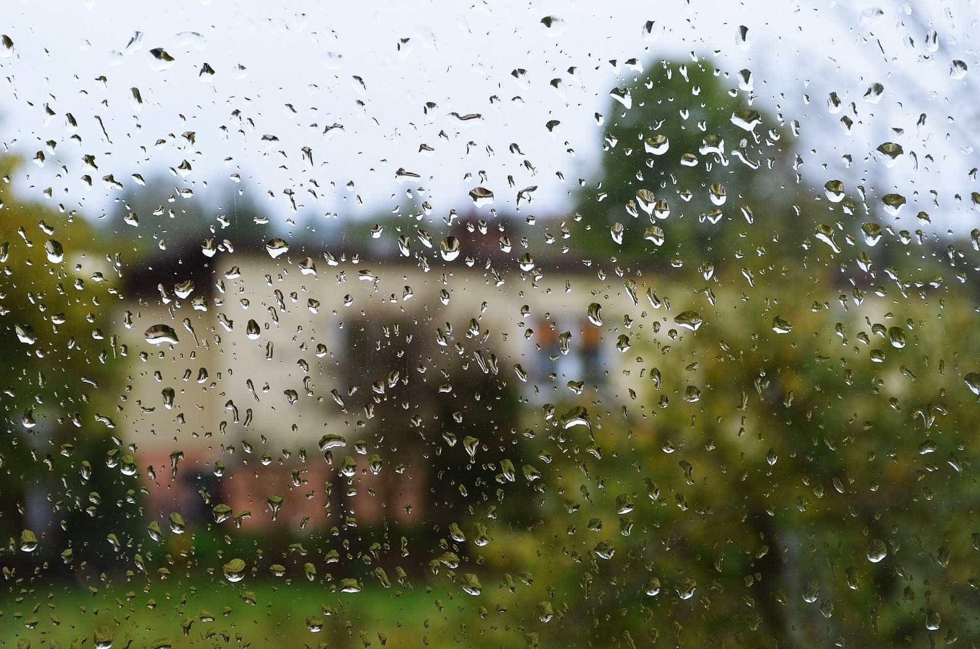 Chuva aqui, neve acolá. Assim andará o tempo para esta terça-feira