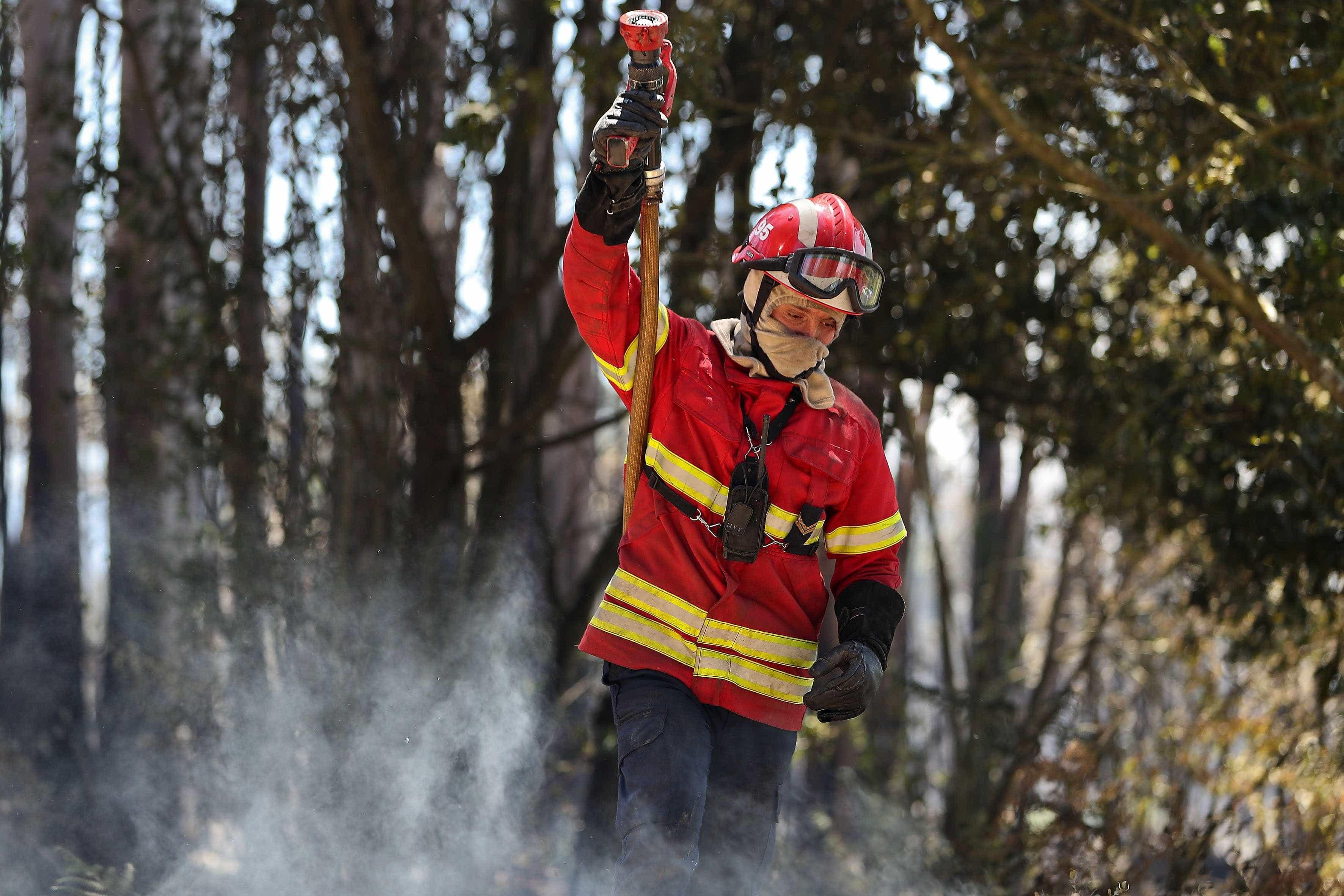 GNR identificou dois suspeitos de incêndio florestal em Viseu