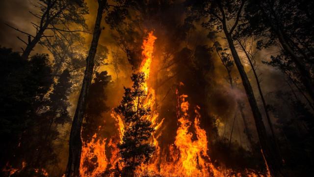 Atenção, temperatura vai descer mas risco de incêndio agrava-se