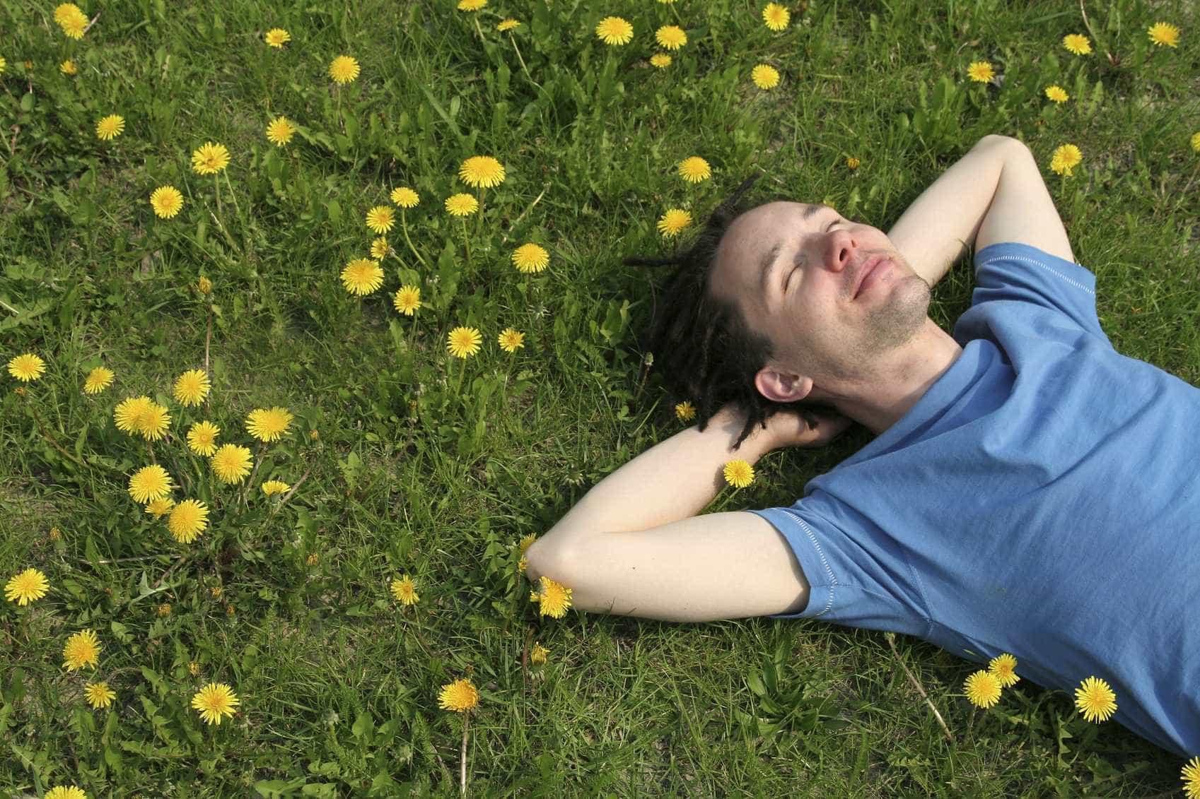 Depois do sol, será esta a melhor fonte de vitamina D?