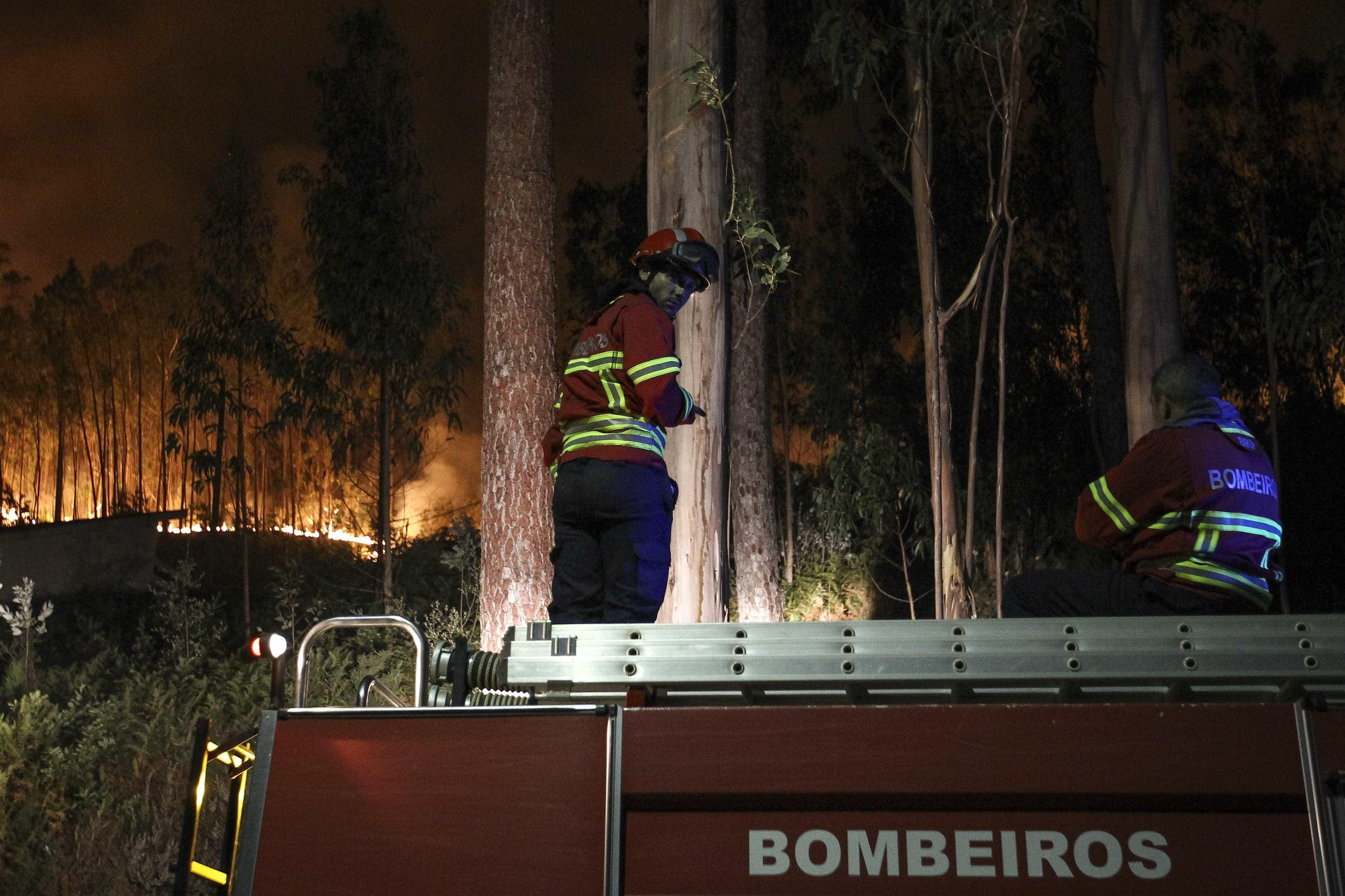 Oliveira de Azeméis: Fogo mobiliza um meio aéreo mais de 100 operacionais