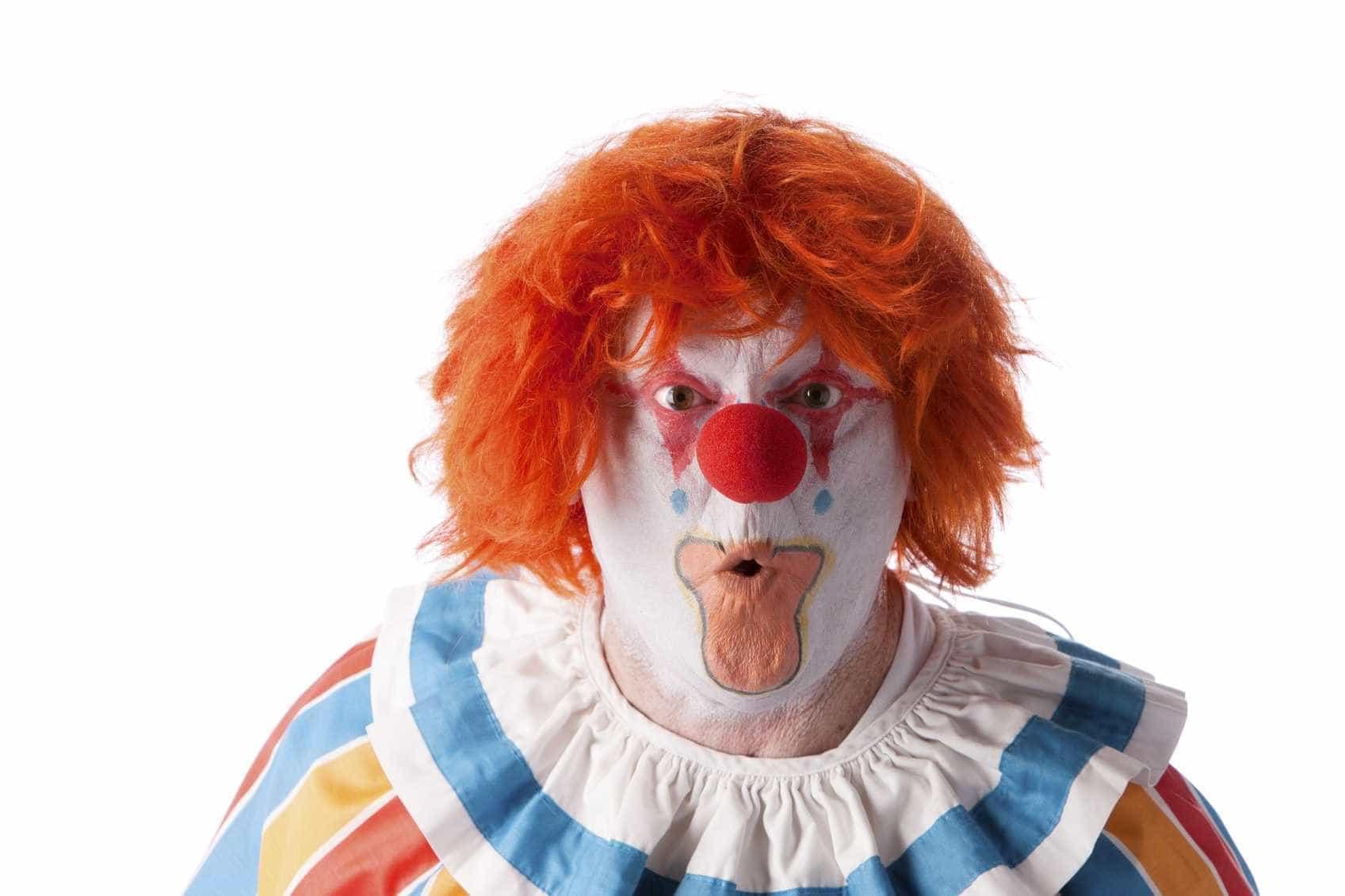 Festival de Circo do Furadouro com 16 espetáculos gratuitos em dois dias