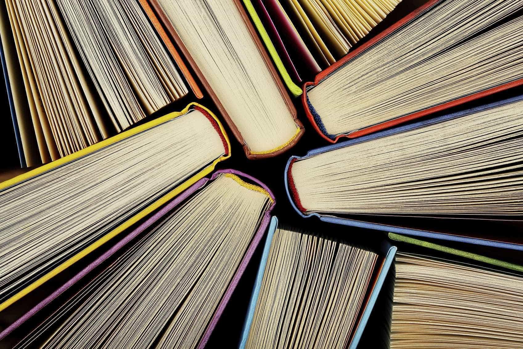 Festival Literário de Ovar com 40 escritores e ilustradores