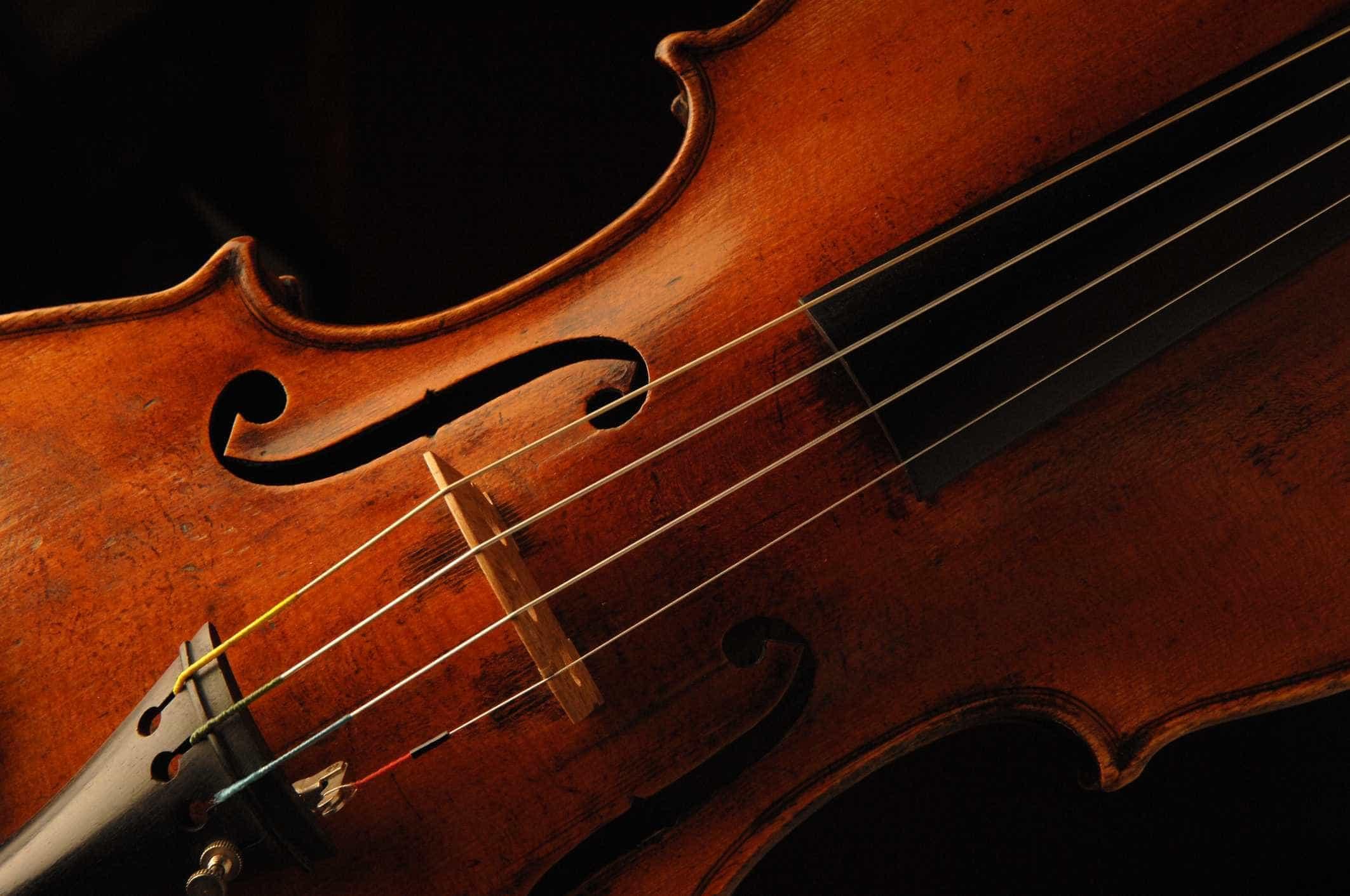 """Violinista Carlos Damas realça """"interesse"""" da China pela música clássica"""