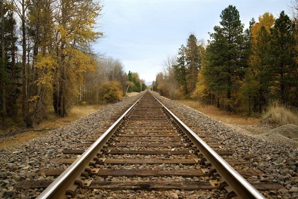 Restabelecida circulação ferroviária em Belver após atropelamento