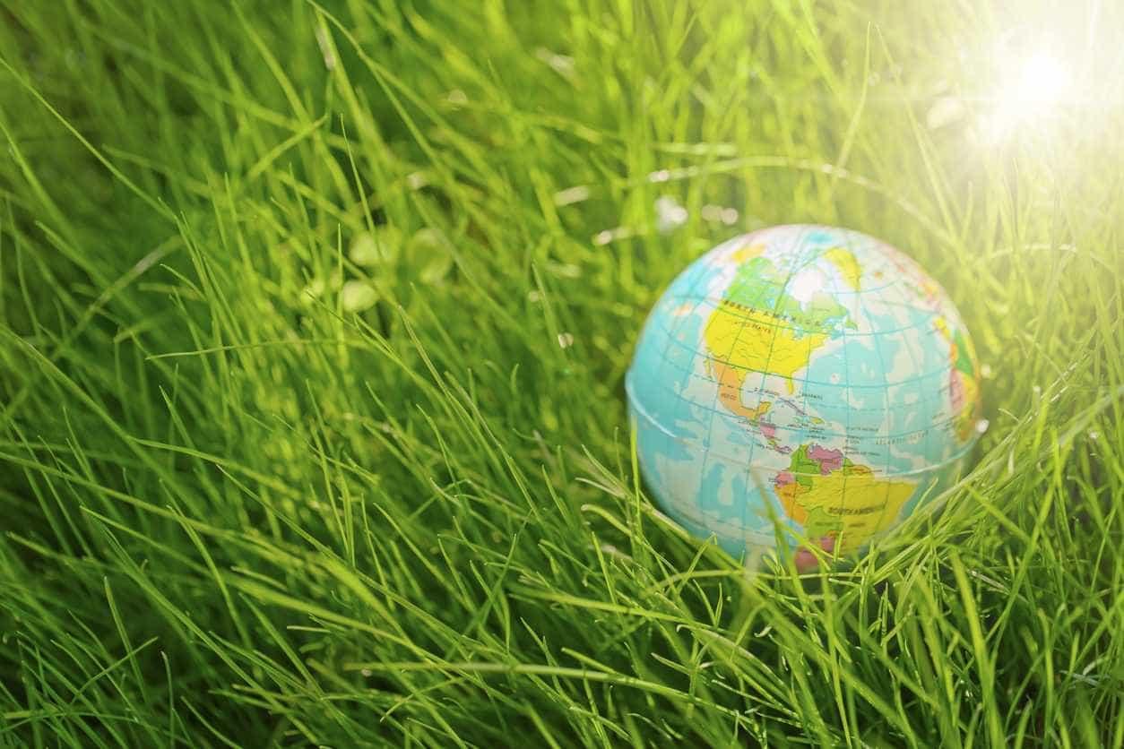 No Dia da Terra, Zero apela à preservação da biodiversidade