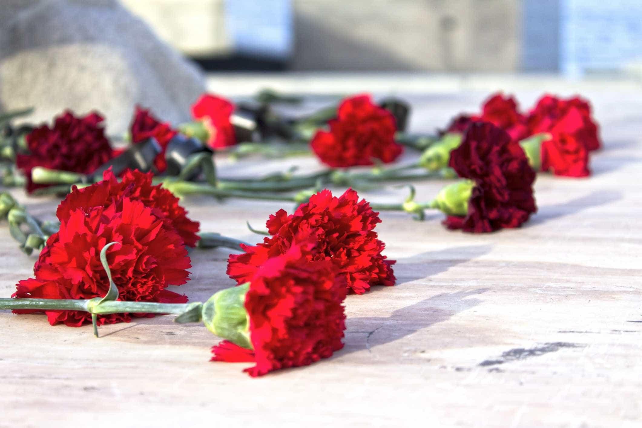 Palavra Abril dá nome à chaimite que homenageia a Revolução dos Cravos