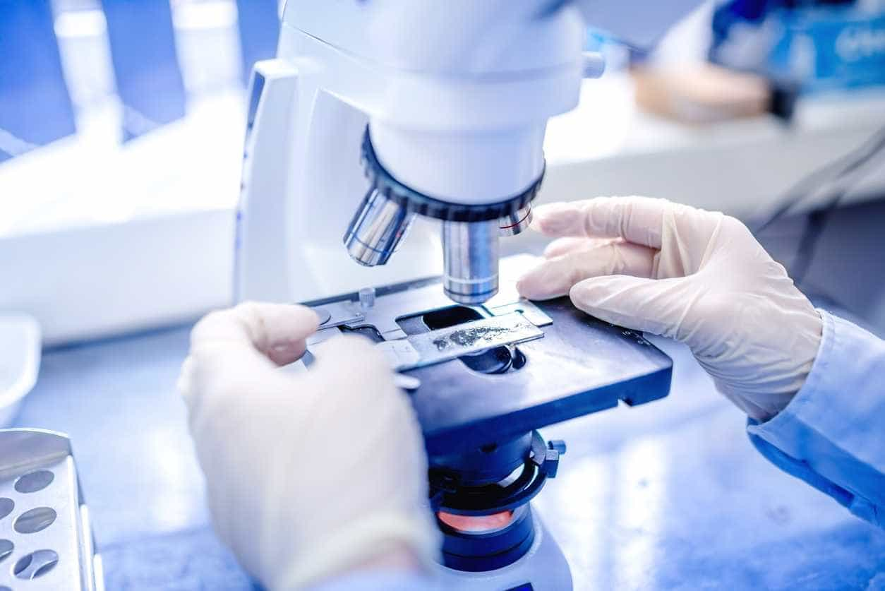 Investigadores desenvolvem molécula natural para substituir estireno