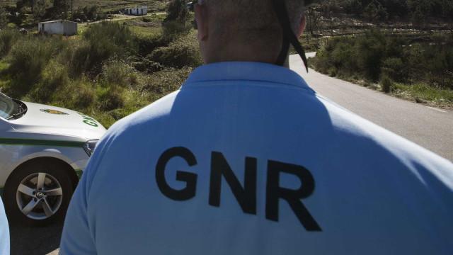 Ladrão detido após perseguição de 100 quilómetros na A1
