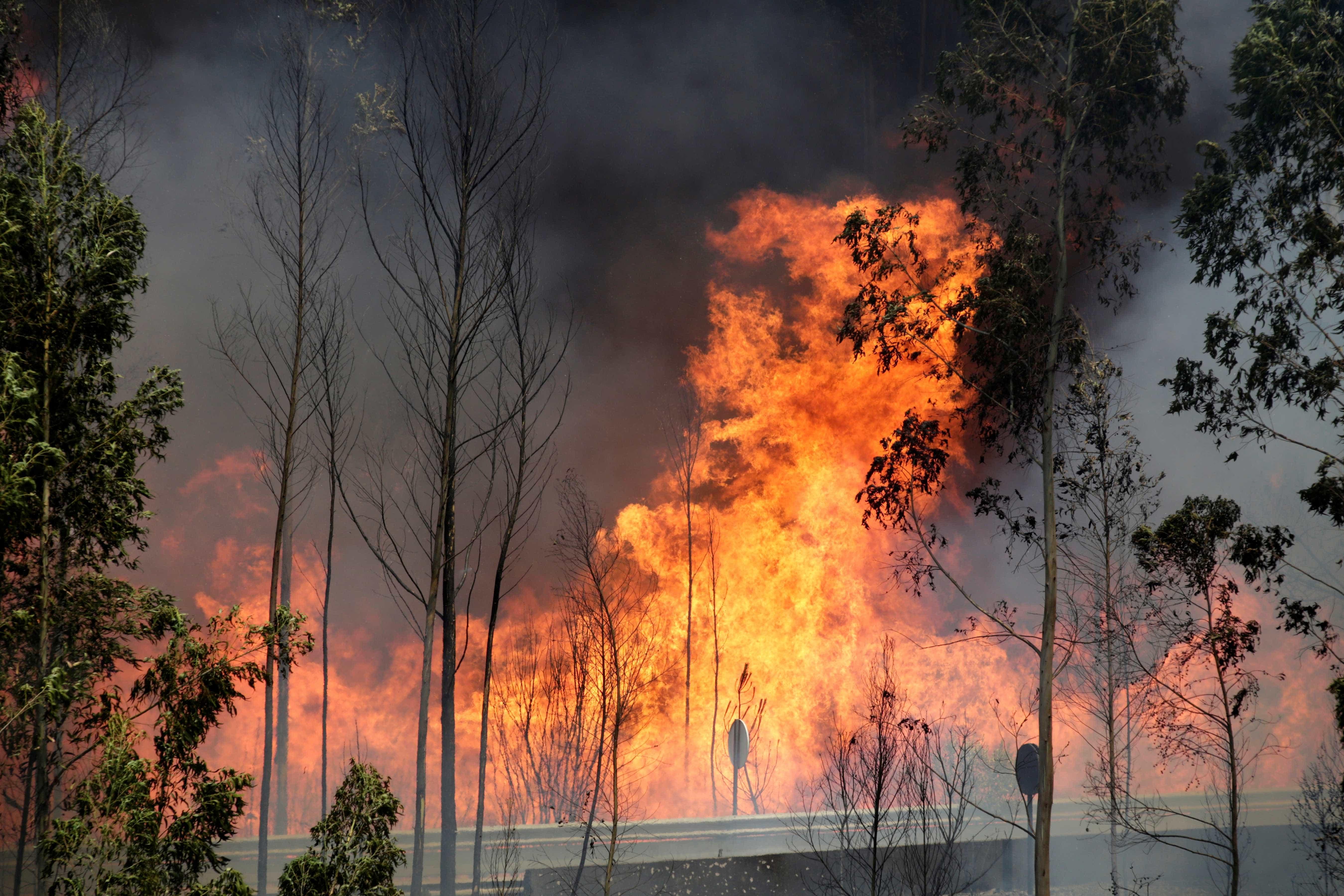 Estudantes multados em 27 milhões devido a churrasco que causou incêndio