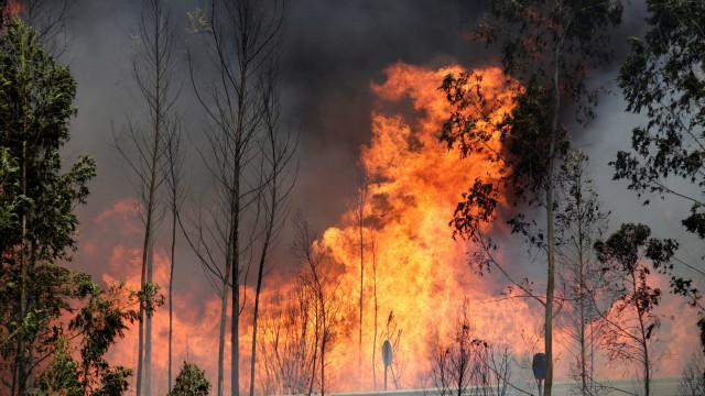 Incêndio na Malveira corta trânsito na A21. Comboios também não circulam