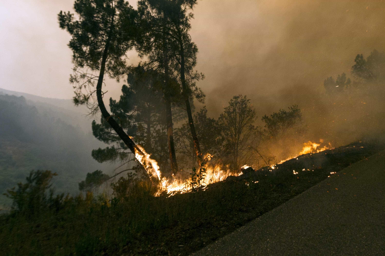Idosa morre em incêndio agrícola em Arcos de Valdevez