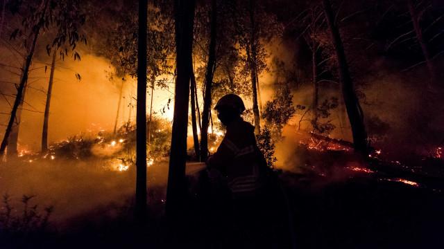Incêndio em St.ª Leocádia, no Minho, tem ainda uma frente ativa