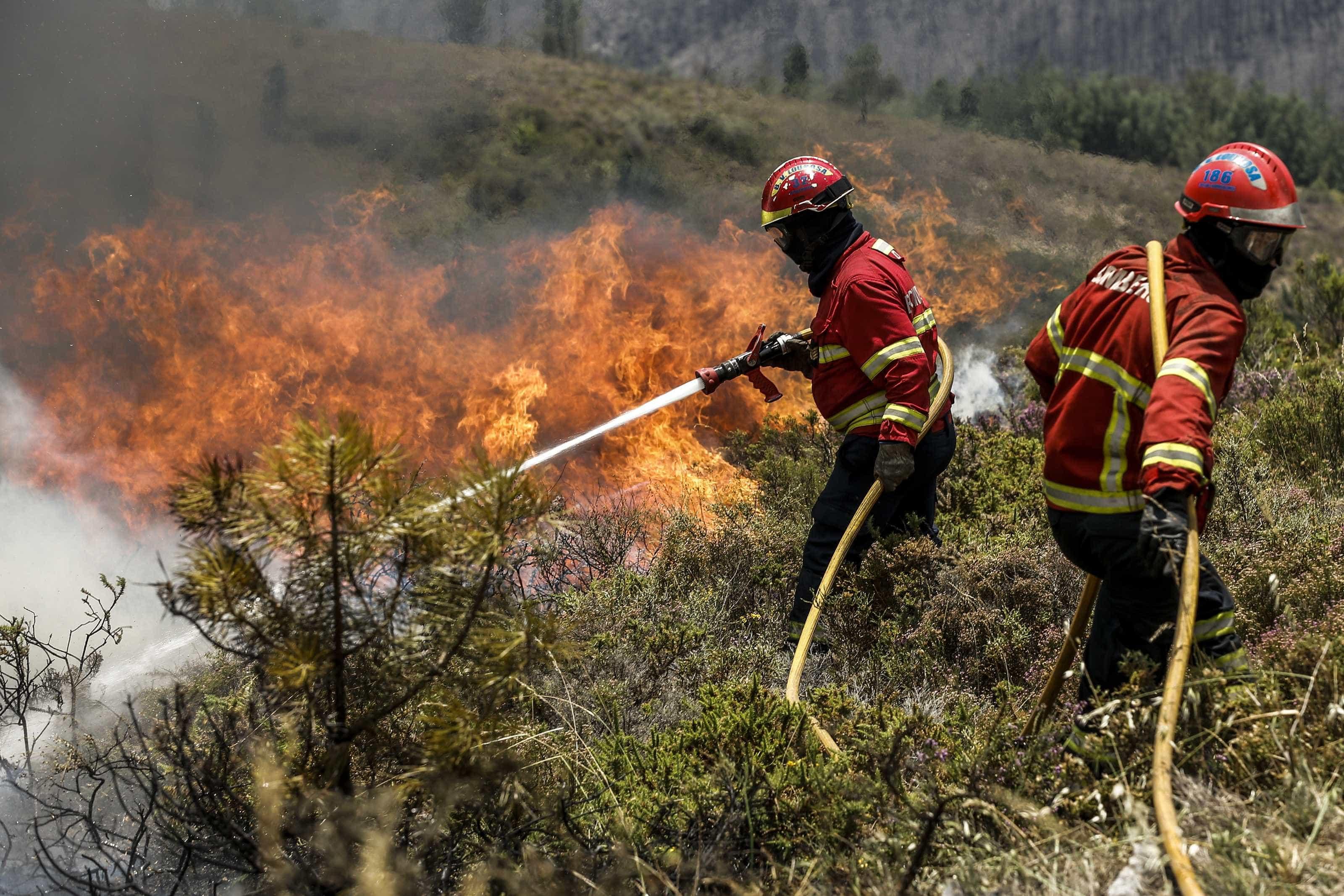 Queima de sobrantes resulta em incêndio. Suspeito foi detido pela GNR