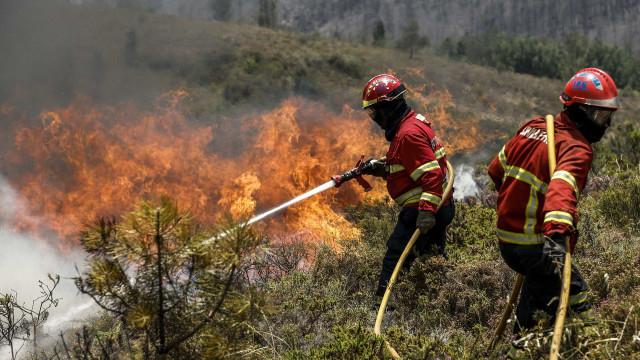 Negligência na origem de 56% dos fogos registados este ano no Alto Minho