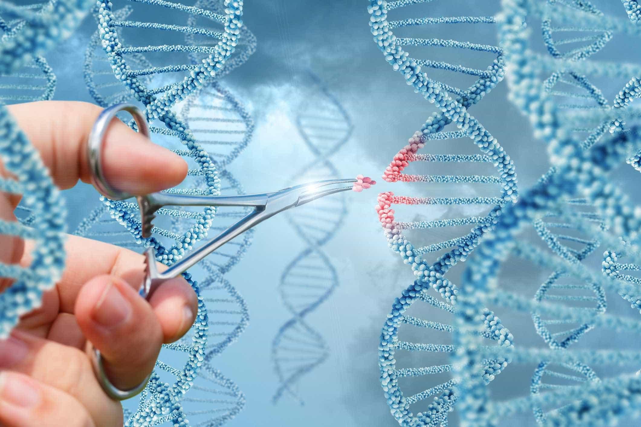 Autorizados testes de ADN a médico que será pai biológico de 200 pessoas