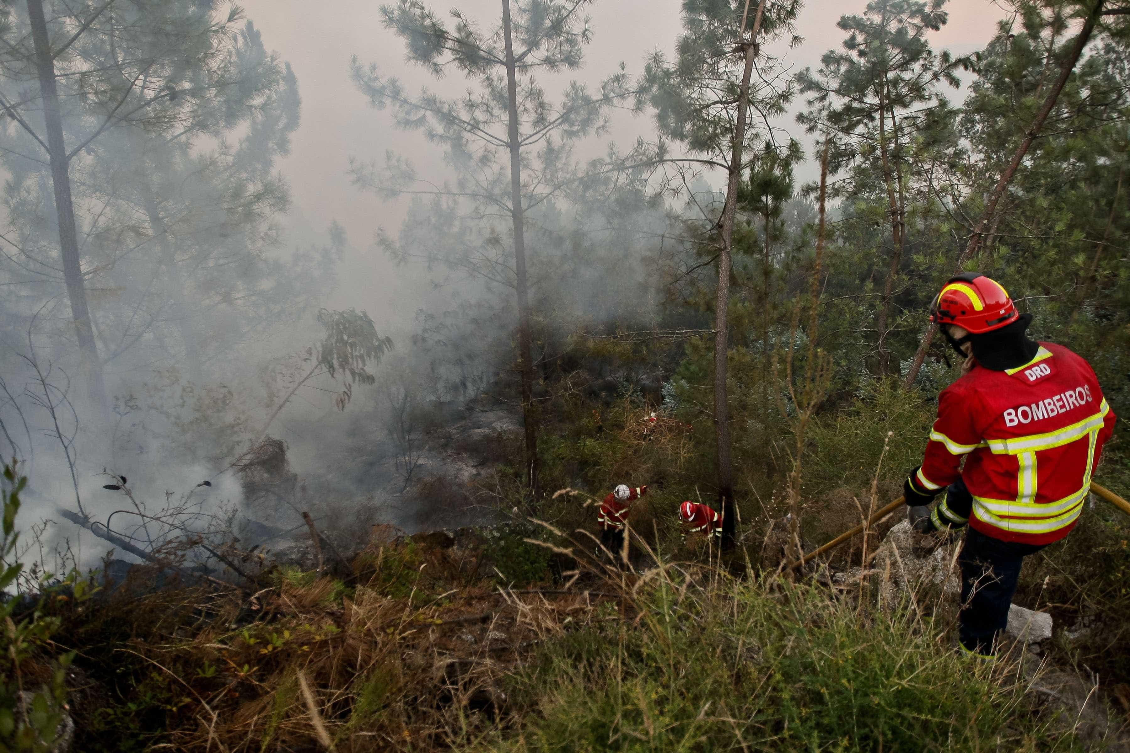 Fogo em zona de difícil acesso em Castro Daire mobiliza dois meios aéreos
