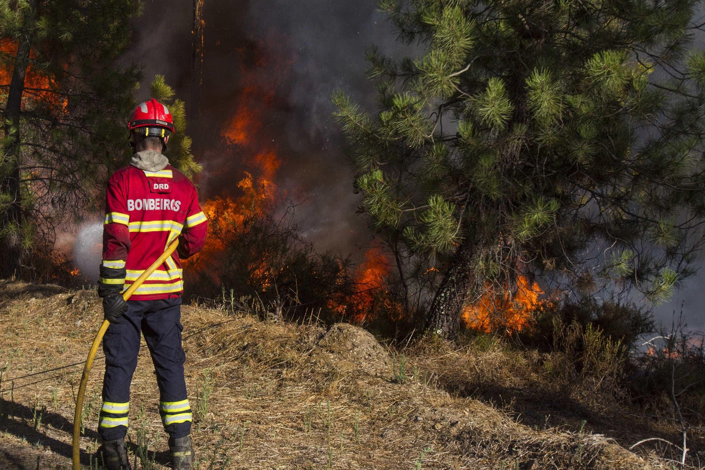 Incêndio em Alcabideche mobiliza quase 100 bombeiros
