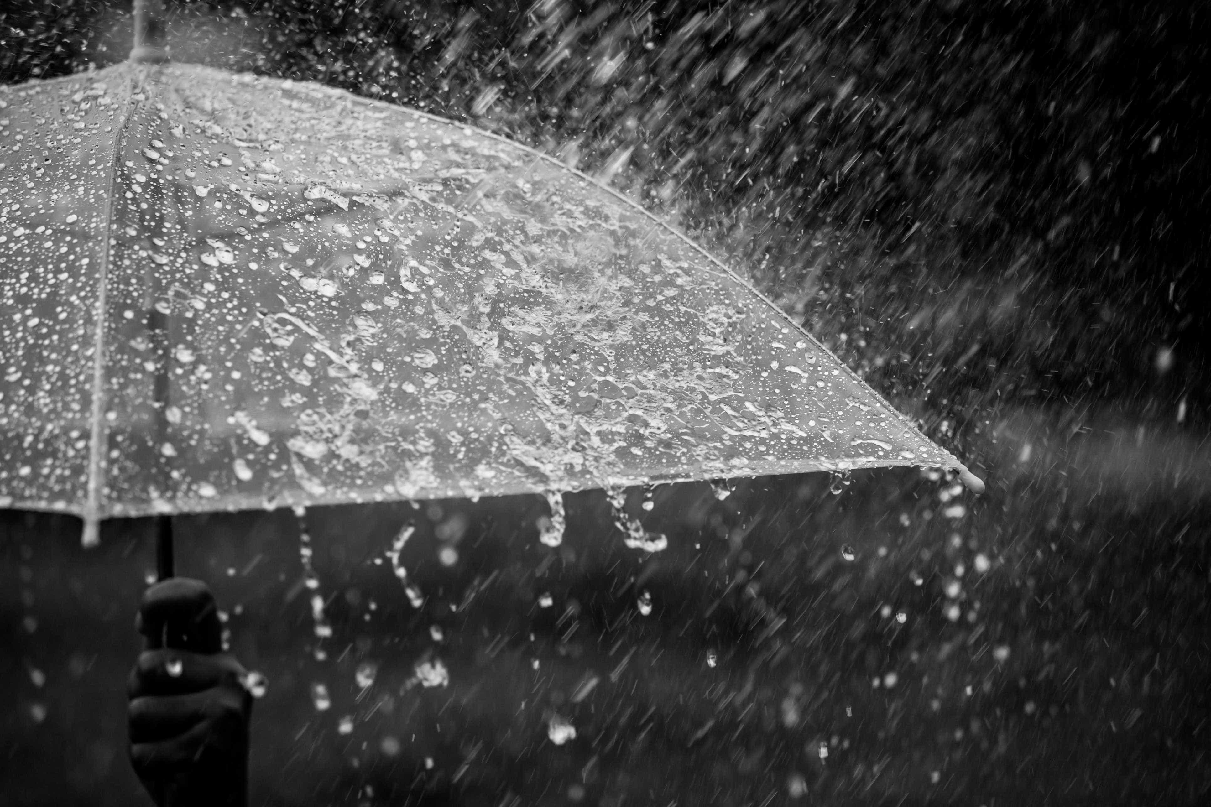 Já cumprimentou o outono? Chegou atrasado e trouxe chuva