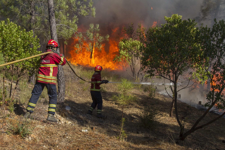 """Incêndio de """"grandes dimensões"""" deflagra em Barcelos"""