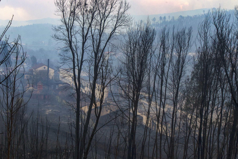 Lesados dos fogos querem 100 milhões no OE para ajudar regiões afetadas